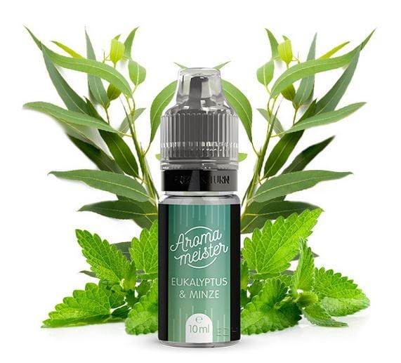 AROMAMEISTER Aroma - Eukalyptus & Minze 10 ml